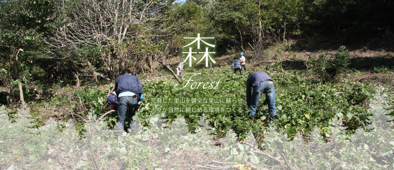 森 荒廃した里山を健全な里山に蘇らせ人々が自然に親しめる環境をつくる